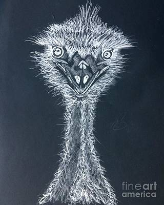 Emu Drawing - Feeling Emused Black And White by TeeJayBee Art