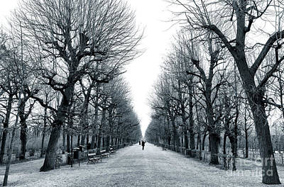 Photograph - Feeling Small In Vienna by John Rizzuto