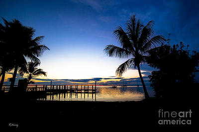 Photograph - Feeling The Tropical Love by Rene Triay Photography