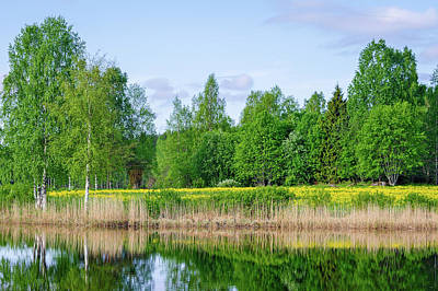 Photograph - Feels Like Summer 2 by Ismo Raisanen