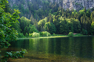 Photograph - Feldsee by Shuwen Wu