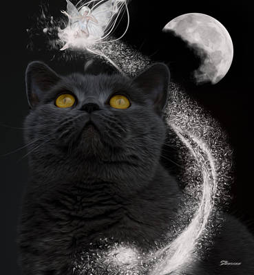 Surrealism Royalty-Free and Rights-Managed Images - Feline Magic by Surreal Photomanipulation