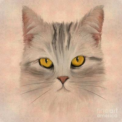 Tabbies Digital Art - Felis Catus by John Edwards