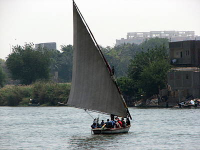 Photograph - Felucca On The Nile by T Guy Spencer