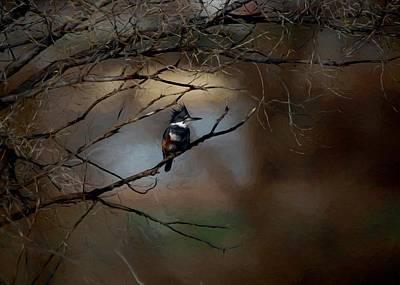 Kingfisher Digital Art - Female Belted Kingfisher 3 by Ernie Echols