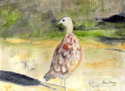 Painting - Female Pheasant by Janel Bragg