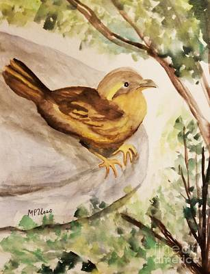 Painting - Female Varied Thrush by Maria Urso