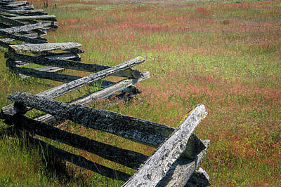 Photograph - Fence And Field by Tom Singleton