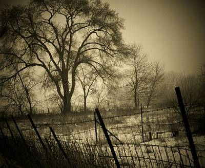 Indiana Landscapes Photograph - Fence And Tree by Michael L Kimble