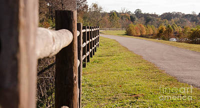 Photograph - Fence  by Andrea Anderegg