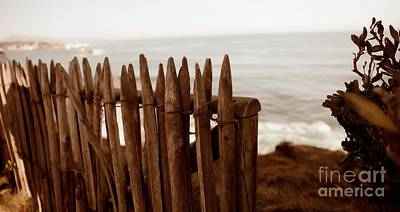 Photograph - Fence by Cendrine Marrouat
