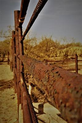 Photograph - Fence Decay by David S Reynolds