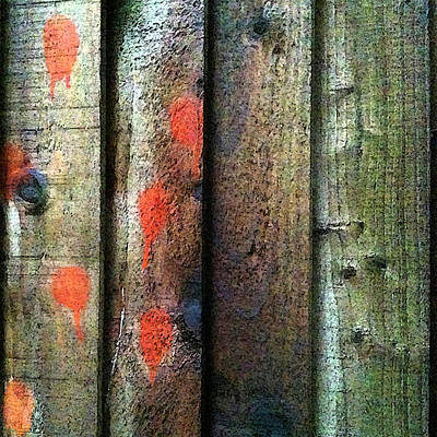 Photograph - Fence Detail, Orange by Anne Kotan