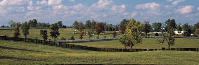 Fence In A Pasture, Lexington, Fayette Art Print by Panoramic Images