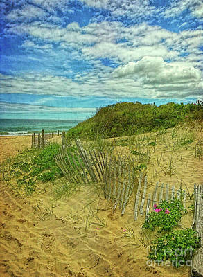 Photograph - Fence In The Dunes by Todd Breitling