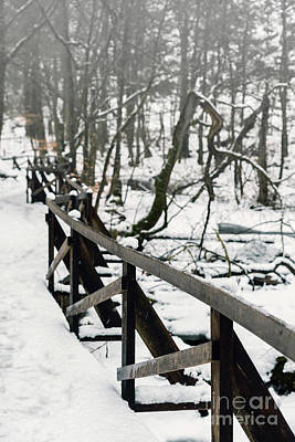 Photograph - Fence In Wintry Park by Sophie McAulay