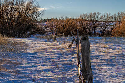 Photograph - Fence Line by Alana Thrower