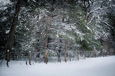 Photograph - Snow Day 3, Fieldwork, Hunter Hill, Hagerstown, Maryla by James Oppenheim