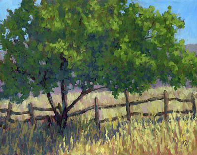 Fence Line Tree Art Print