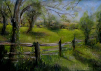 Fence Line Art Print by Wendie Thompson