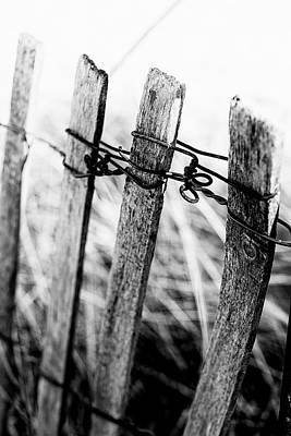 Fence Lines Original