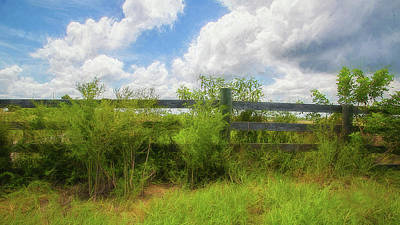 Photograph - Fence by Nancie Rowan
