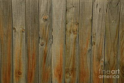 Photograph - Fence by Nareeta Martin