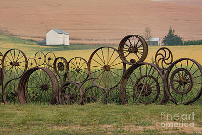 Photograph - Fence Of Wheels by John Greco