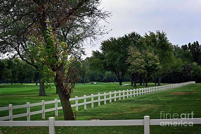 Frank J Casella Royalty-Free and Rights-Managed Images - Fence on the Wooded Green by Frank J Casella