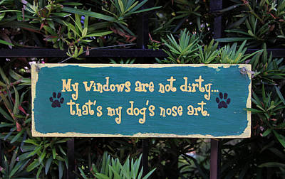 Photograph - Fence Post With Puppy Quote by Juergen Roth