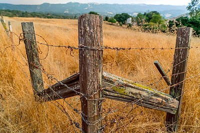 Photograph - Fence Posts by Derek Dean