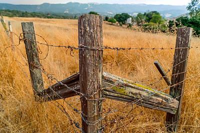 Photograph - Fence Posts by Derek Dean