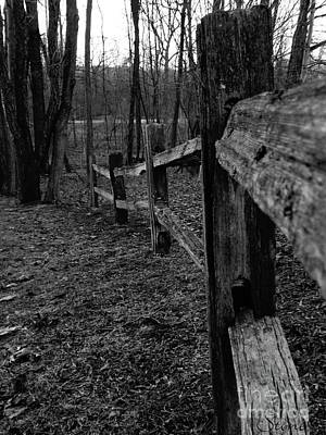 Photograph - Fence To Nowhere by September  Stone