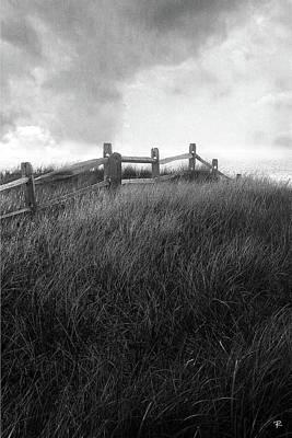 Fence Art Print by Tom Romeo