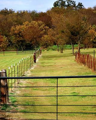 Photograph - Fence Way by Jerry Sodorff