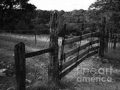 Photograph - Fence With Barb Wire by Ej Catoe