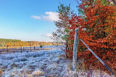 Photograph - Fenced Autumn by Dmytro Korol