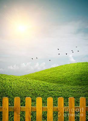 Fenced Grass Hills Art Print by Carlos Caetano