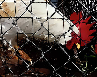 Mixed Media - Fenced In Chicken Art By Lesa Fine by Lesa Fine