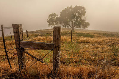 Photograph - Fenced In Fog by Peter Tellone