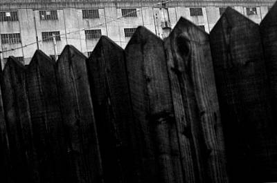 Fenced In Or Out Art Print by Jez C Self