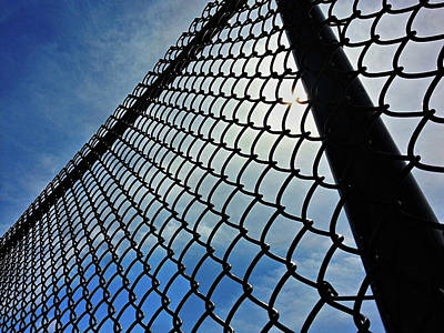 Photograph - Fenced In by Robert Knight