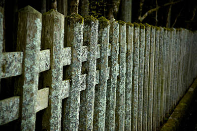 Old Fence Photograph - Fenced In by Sebastian Musial