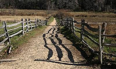 Fenced Path Art Print