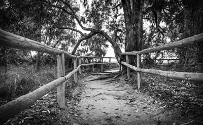 Photograph - Fenced Pathway. by Gary Gillette