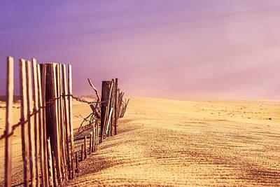 Photograph - Fenceline by Greg Collins