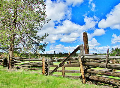 Photograph - Fenceline by Marilyn Diaz