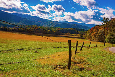 Photograph - Fenceline View II by Steven Ainsworth