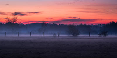Photograph - Fences And Bare Trees At Dusk by Alexander Kunz