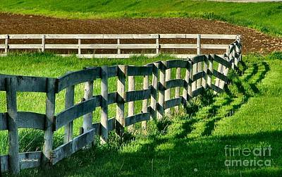 Fences And Shadows Art Print